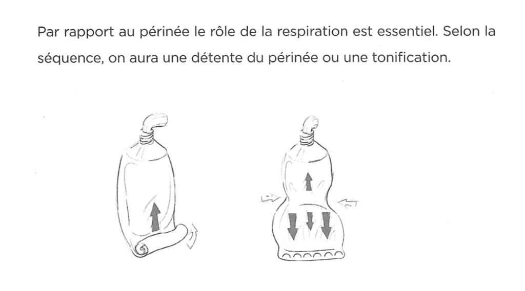 Pressions exercées lors de la contraction du transverse de l'abdomen et du périnée