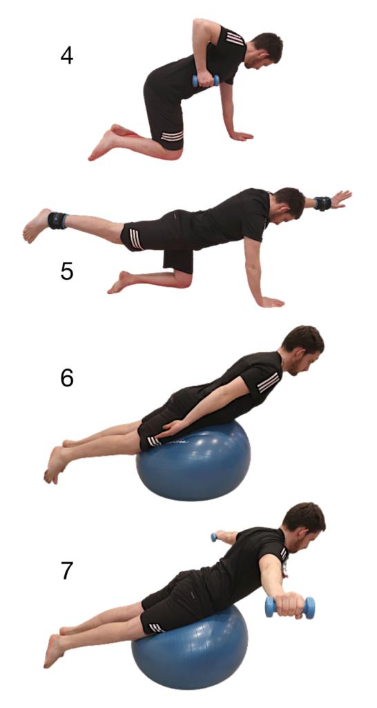 4 exercices avec haltères et ballon pour travailler les muscles du dos chez soi